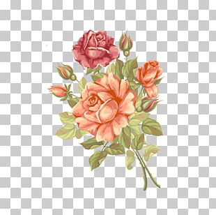 Rose Flower Greeting Card PNG