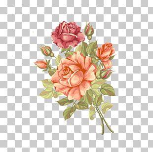Rose Flower Greeting Card PNG