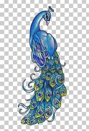 Elegant Hand-painted Peacock PNG