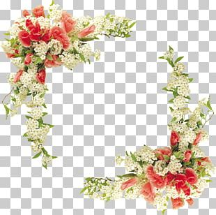 Border Flowers Floral Design PNG