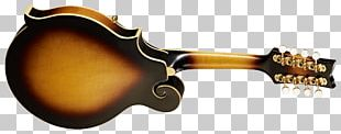 Musical Instruments Plucked String Instrument Mandolin Bridge String Instruments PNG