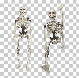 Bone April Fools Day Kuso White Skeleton PNG