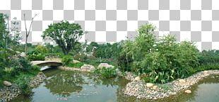Pond Garden Landscape Architecture PNG
