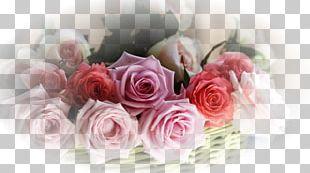 Flower Bouquet Desktop Garden Roses PNG