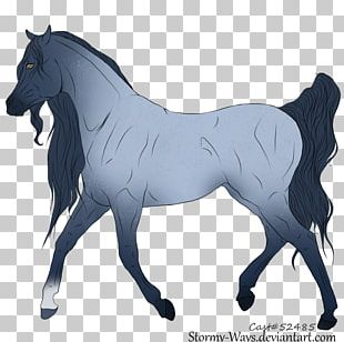Stallion Mustang Foal Mare Colt PNG