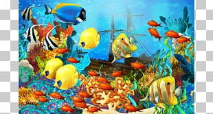 Underwater Coral Reef Fish Tropical Fish PNG