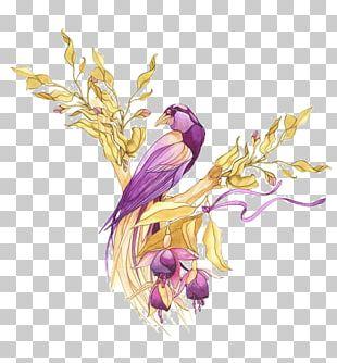 Bird Drawing PNG