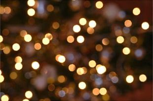 Christmas Lights Christmas Lights Christmas Tree Lighting PNG