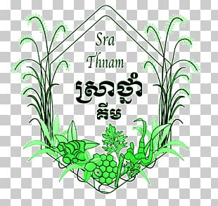 Sra Thnam House Grasses Medicinal Plants Plant Stem PNG