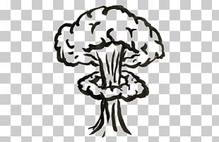 Tsar Bomba Nuclear Weapon Nuclear Explosion Drawing PNG