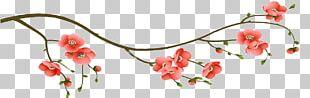 Cherry Blossom Branch Flower Floral Design PNG