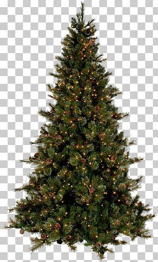 Christmas Tree Modern PNG