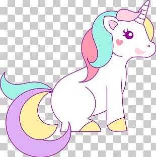Unicorn Drawing Rainbow Legendary Creature PNG