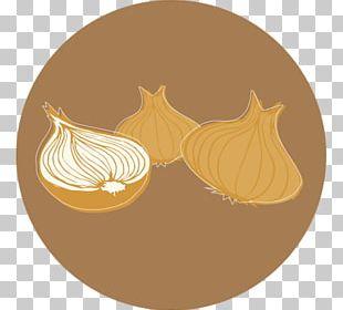 Organic Product Sweet Onion Organic Food PNG