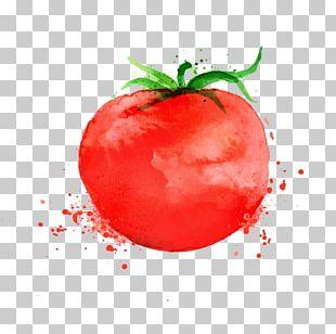 Pizza Parmigiana Tomato Soup PNG