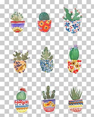 Cactaceae Watercolor Painting Art Drawing Illustration PNG