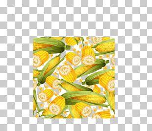 Corn On The Cob Sweet Corn Maize Field Corn PNG