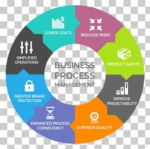 Organization Business Process Management PNG