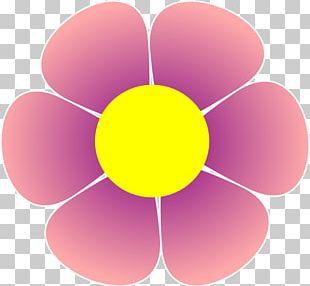 Flower Red Poppy PNG