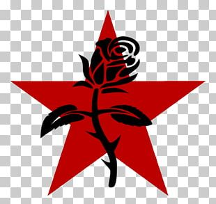 Anarchism Black Rose Symbol Anarchy Anarcho-syndicalism PNG