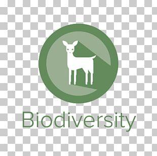 University Of Colorado Boulder University Of California PNG