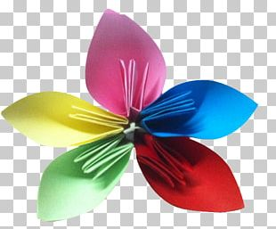 Petal Origami PNG