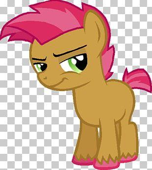 Pony Babs Seed Big McIntosh Scootaloo Sweetie Belle PNG