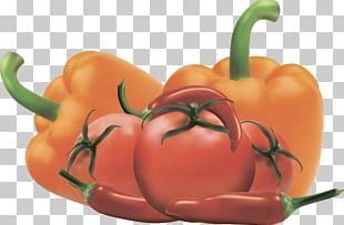 Bell Pepper Vegetable Food Tomato PNG
