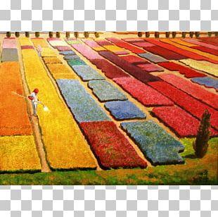 Carpet Mat Rectangle PNG
