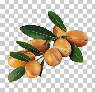 Lotion Argan Oil Skin PNG