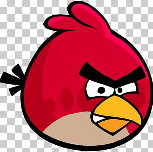 Angry Bird Icon PNG
