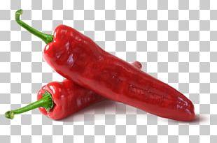 Habanero Chile De árbol Piquillo Pepper Serrano Pepper Jalapeño PNG