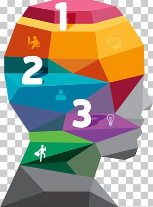 Infographic Geometry Illustration PNG