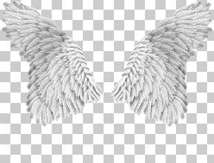 Angel Beijada Por Um Anjo PNG