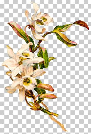 Victorian Vintage Flowers PNG