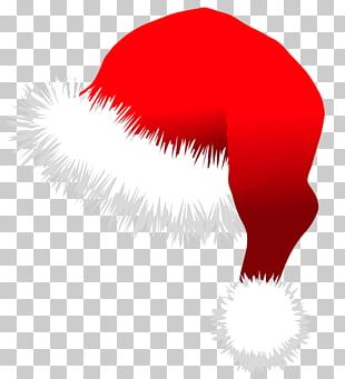 Santa Claus Hat Santa Suit Christmas PNG