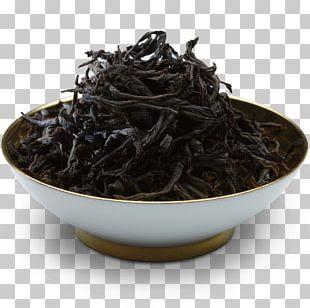 Nilgiri Tea Lapsang Souchong Tsukudani Tea Plant Sea PNG