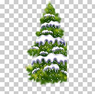 Christmas Tree Computer File PNG