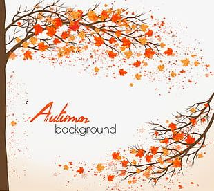Beautiful Autumn Background Material PNG