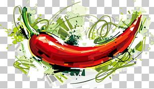 Chili Con Carne Chili Pepper Capsicum Drawing PNG