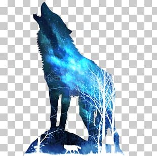 Horse Gray Wolf PNG