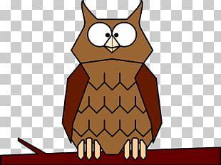 Great Horned Owl Bird Eastern Screech Owl PNG
