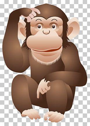 Ape Chimpanzee Monkey PNG