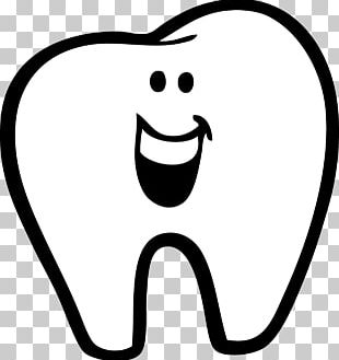 Human Tooth Drawing PNG
