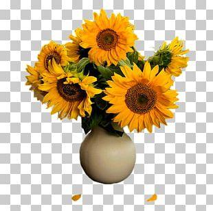 Common Sunflower Floral Design Transvaal Daisy Flowerpot Cut Flowers PNG