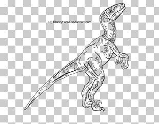 Velociraptor Jurassic World Evolution Tyrannosaurus Jurassic Park Line Art PNG