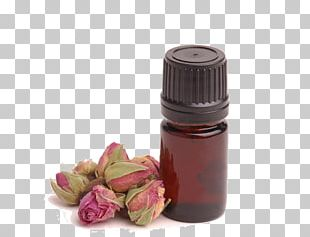 Aromatherapy Essential Oil Naturopathy Massage PNG