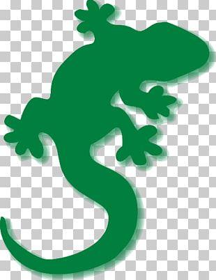 Lizard Common Iguanas Chameleons Reptile PNG