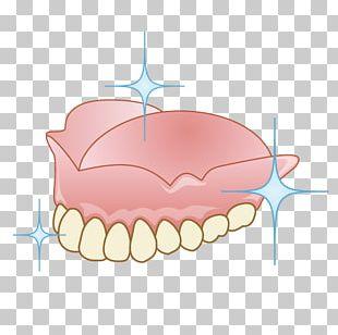 審美歯科 Dentist Dentures Therapy PNG