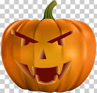 Pumpkin Cucurbita Halloween Jack-o'-lantern Calabaza PNG
